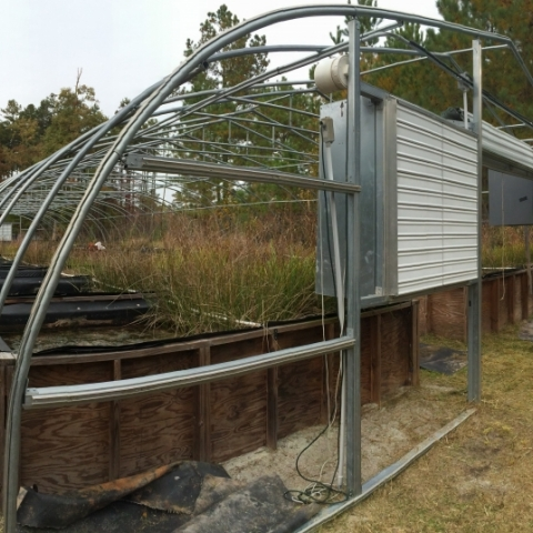 We keep the mesocosms open to the elements 9 months out of the year, but we covered heat them during the winter months.